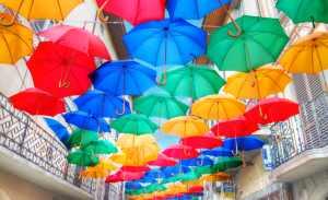 Krásy života odhalují více barev