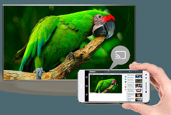 Televize TCL 55EP680 černá 6